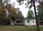 Foreclosed Home in Newaygo 49337 5124 E 36TH ST - Property ID: 3162699