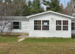 Foreclosed Home in Newaygo 49337 77 MAPLE RIDGE RD - Property ID: 3665680