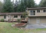Foreclosed Home in Greenbank 98253 875 SILVER CLOUD LN - Property ID: 4003414