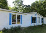 Foreclosed Home in White Cloud 49349 824 S NICHOLAS AVE - Property ID: 4019227