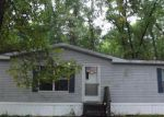 Foreclosed Home in Newaygo 49337 9988 W COUNTYLINE RD - Property ID: 4027811