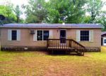Foreclosed Home in Bitely 49309 10E E 17 MILE RD - Property ID: 4050021