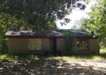 Foreclosure Auction in Shepherd 77371 291 W MAIN DR - Property ID: 1717200