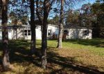 Foreclosed Home in Harrison 48625 8644 W TEMPLE DR - Property ID: 4065548