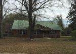 Foreclosed Home in Beckville 75631 846 FM 2792 - Property ID: 4120232