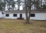 Foreclosed Home in Bitely 49309 8334 N COMSTOCK AVE - Property ID: 4128961