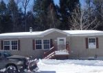 Foreclosed Home in Parish 13131 397 FRENCH ST - Property ID: 4132649