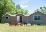 Foreclosed Home in White Cloud 49349 512 S SILVER DR - Property ID: 4145921