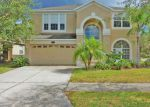 Foreclosed Home in Tampa 33647 20201 STILL WIND DR - Property ID: 4224692
