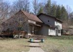 Foreclosed Home in Honor 49640 10506 DEADSTREAM RD - Property ID: 4268365