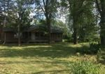 Foreclosed Home in Eagle 48822 10759 S WRIGHT RD - Property ID: 4292891
