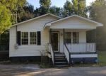 Foreclosed Home in Lane 29564 258 10TH ST - Property ID: 4299060