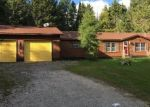 Foreclosed Home in Cedarville 49719 2167 E M 134 - Property ID: 4301365