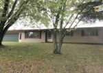 Foreclosed Home in Bitely 49309 8948 WARNER AVE - Property ID: 4301482