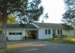 Foreclosed Home in Hudson 12534 167 BEGOS RD - Property ID: 4304073