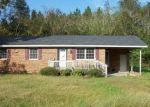 Foreclosed Home in Willard 28478 2900 WILLARD RD - Property ID: 4306070