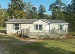 Foreclosed Home in Corning 43730 14785 PORTIE FLAMINGO RD SE - Property ID: 4307161
