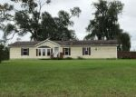 Foreclosed Home in Mayville 48744 1924 E BROWN RD - Property ID: 4309098