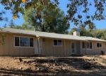Foreclosed Home in Fiddletown 95629 16600 TYLER RD - Property ID: 4309313
