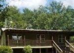 Foreclosed Home in Brookwood 35444 13903 BUFFALO CREEK LN - Property ID: 4312765