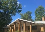 Foreclosed Home in Big Sandy 75755 138 CARRINGTON LN - Property ID: 4312901
