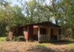 Foreclosed Home in Flint 75762 19361 ADOBE TRL - Property ID: 4313864