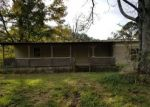 Foreclosed Home in Nauvoo 35578 109 SYCAMORE LN - Property ID: 4322853