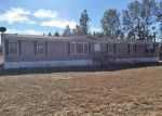 Foreclosed Home in Darlington 29540 3340 LANGLEY DR - Property ID: 4322894