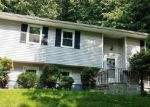 Foreclosed Home in Brewster 10509 84 ALLVIEW AVE - Property ID: 4337390