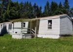 Foreclosed Home in Smyrna 13464 502 GERMAN HOLLOW RD - Property ID: 4341549