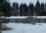 Foreclosed Home in Boyne Falls 49713 4510 SKOP RD - Property ID: 4344276